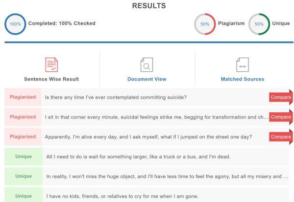 essay plagiarism results